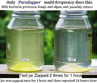 ParaZapper® zaps microbes quickly