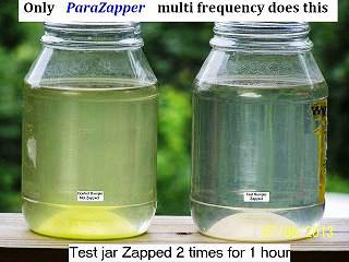 Parasite Zapper zaps microbes quickly